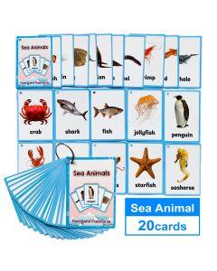 Montessori Flash Cards Funny Lands QR Code Iteractive Sea Animals
