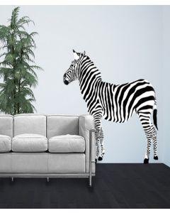 Safari Zebra Look Left Giant Character Pack