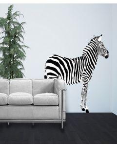 Safari Zebra Look Right Giant Character Pack