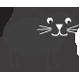 Pets - Black Cat