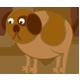 Pets - Dog