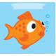 Pets - Fish