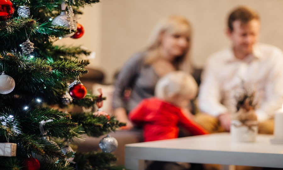 The Importance of Childproofing Your Home for the Christmas Holidays