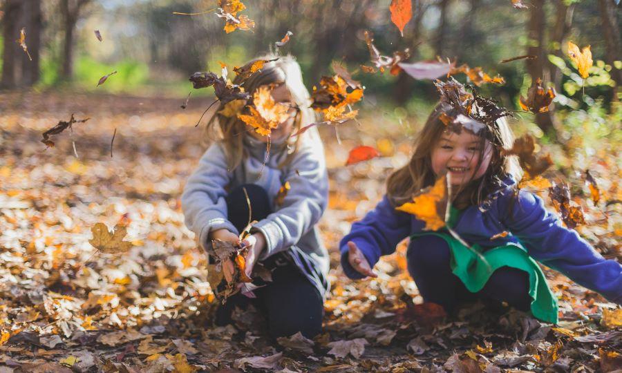 11 DIY Autumn Activities Your Kids Will Love